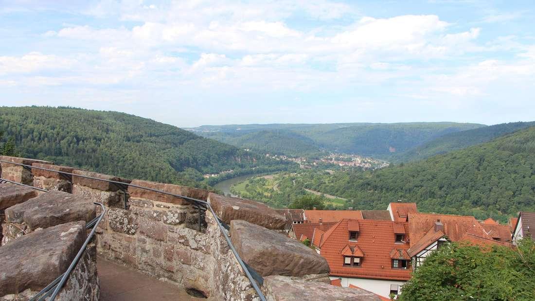 Blick über die Ringmauer auf Neckargemünd.