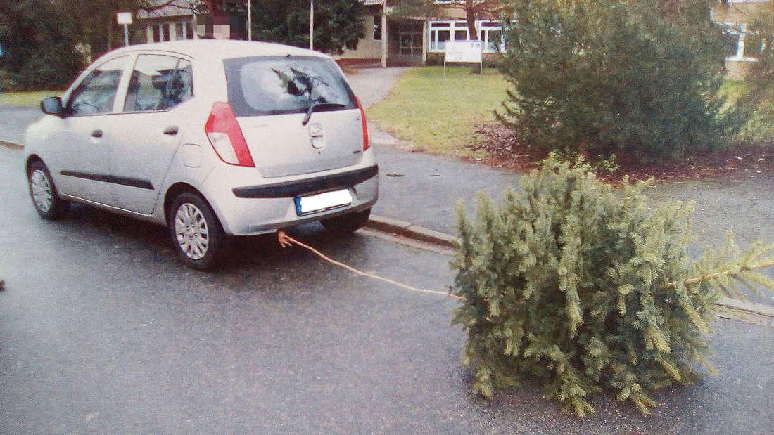 Polizei stoppt kuriosen Weihnachtsbaum-Transport.