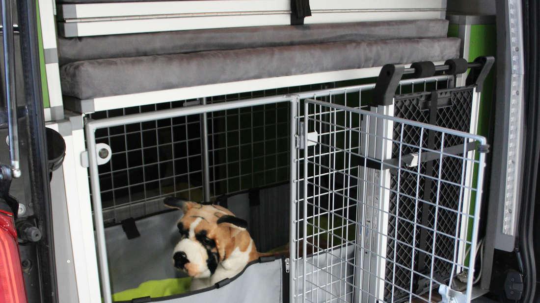 Dogscamper Modular auf Basis des Mercedes-Benz Vito Tourer.