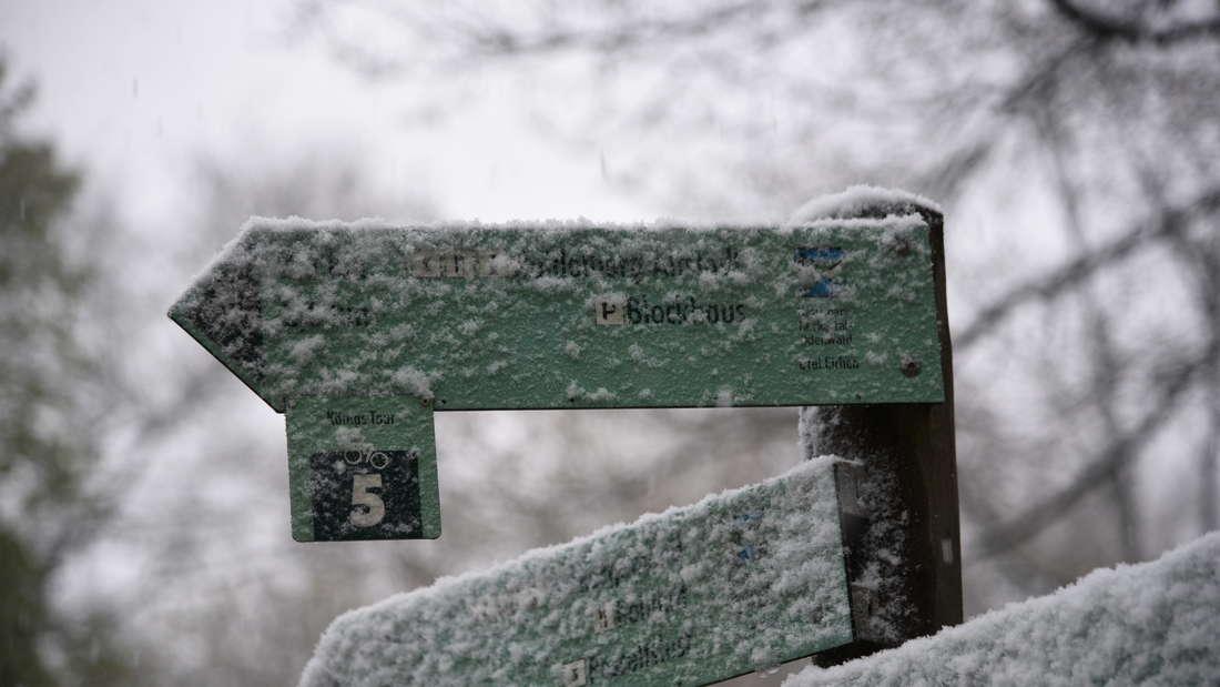 Schneefall auf dem Königstuhl