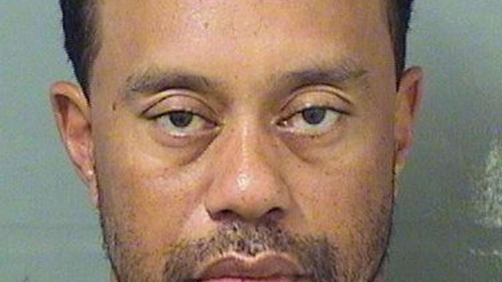 Das Polizei-Foto von Tiger Woods. Foto: Palm Beach County Sheriff&#39s office