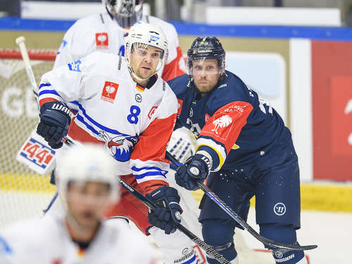 Adler starten furios in Champions Hockey League