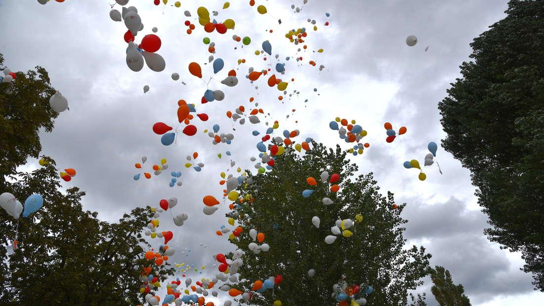 Trotz Wind und Wolken zahlreiche Besucher bei 8. Benefizregatta Rudern gegen Krebs
