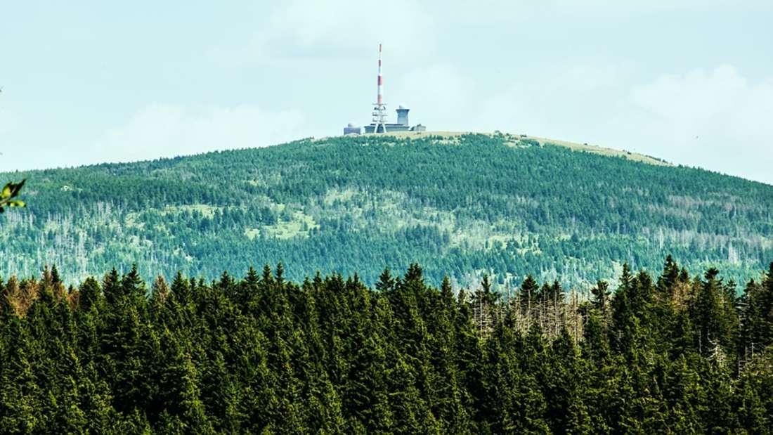 Nationalpark Harz: Der Nationalpark Harz ist einer der größten Waldnationalparke in Deutschland und umfasst rund 25.000 Hektar.