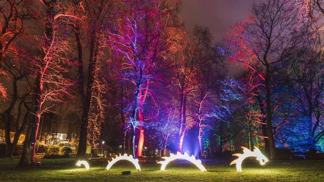 Winterlichter im Luisenpark 2018