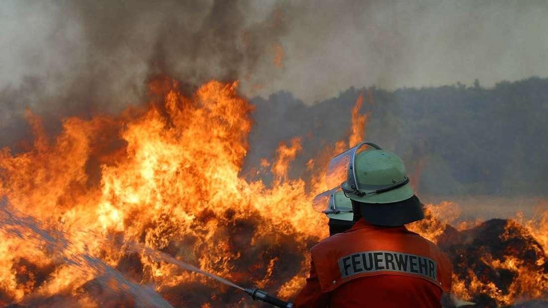 Die Einsatzkräfte versuchen das Feuer mit einem Großaufgebot zu löschen. (Symbolbild)