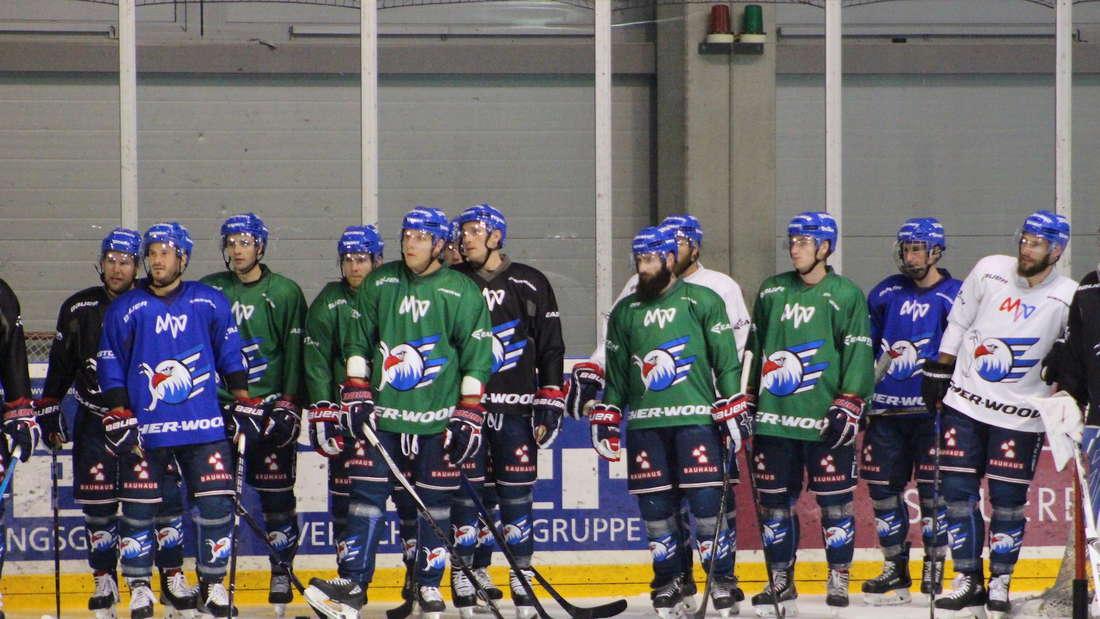 Die Adler Mannheim sind ins Training für die kommende DEL-Saison gestartet.