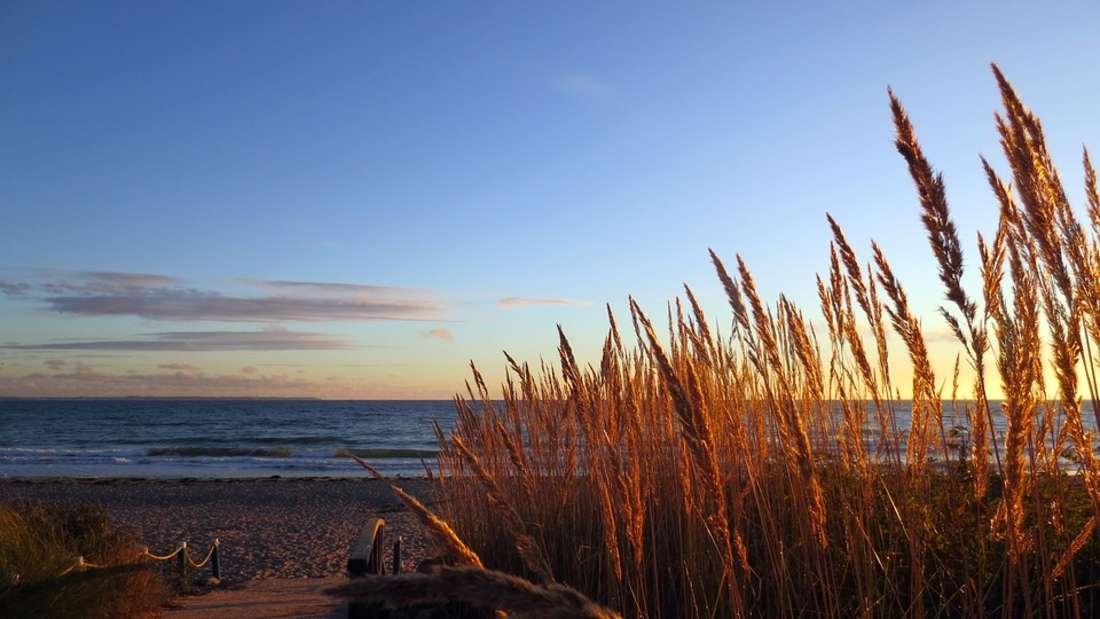 Ostsee schlägt Nordsee? Das sind die beliebtesten Strände Deutschlands