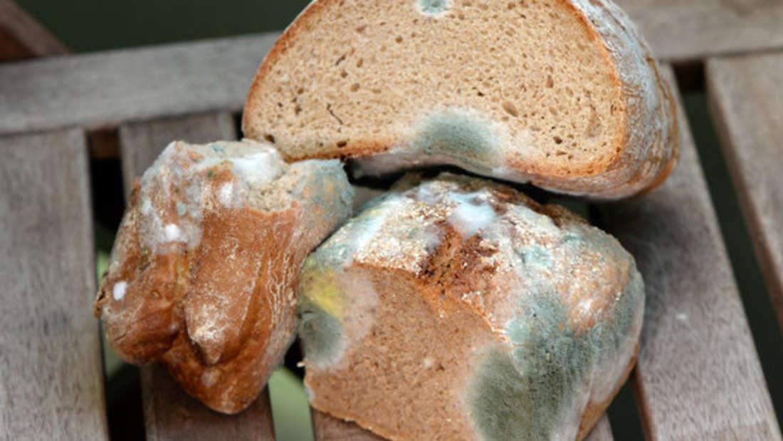 Schimmel ist oftmals nicht nur oberflächlich auf Lebensmitteln zu finden, sondernbildet darinauch unsichtbare Fäden.