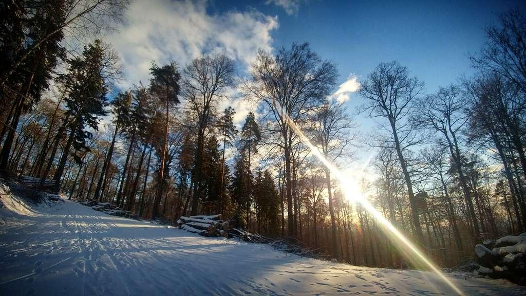 Rhein neckar region erster schnee des jahres gefallen die sch nsten bilder der leser region - Schneebilder kostenlos ...
