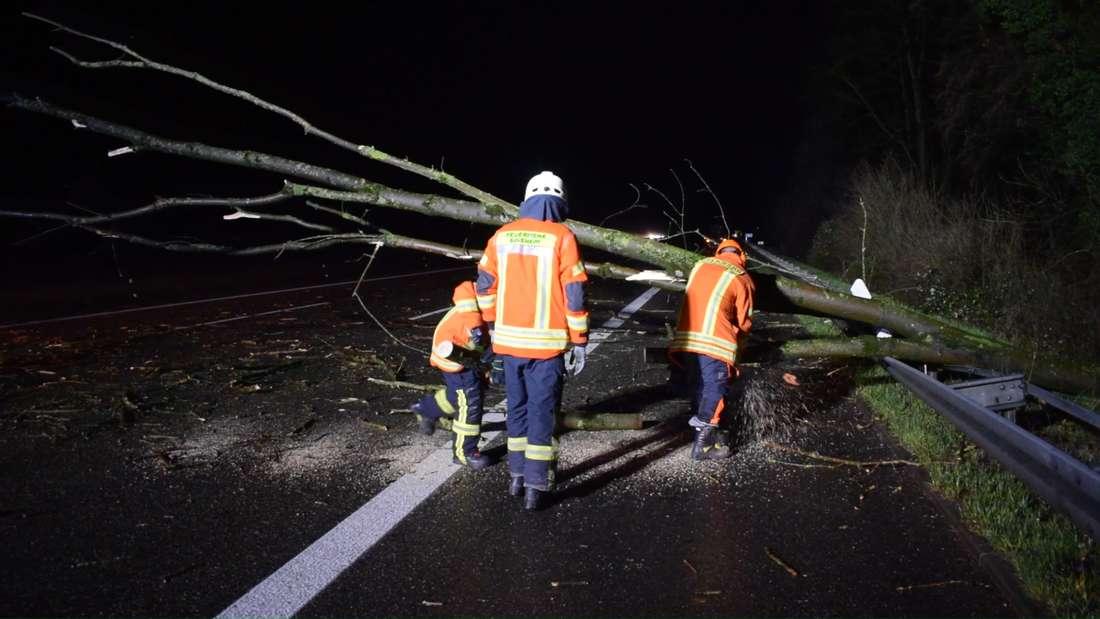 Auf der A6 stürzt ein Baum auf die Fahrbahn.