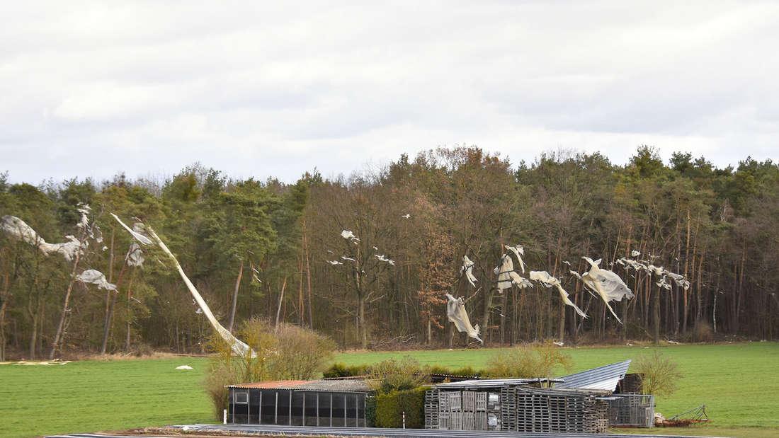 In der Pfalz weht es mehrere Abdeckplanen von den Feldern. Diese verfangen sich in Bäumen oder wehen auf die Straße.