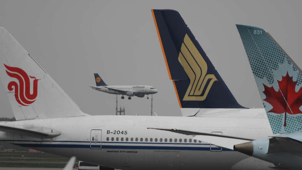 Frankfurt Flughafen Landungen