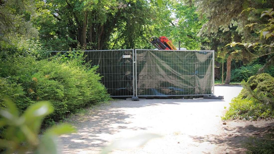 Grab Helmut Kohl Speyer Juni 2019 Bauzaun