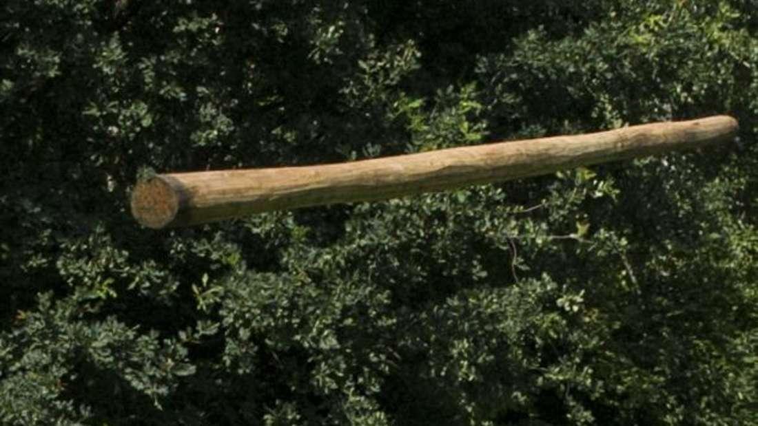 Ein Mann wird von einem Baumstamm getroffen und schwere verletzt. (Symbolfoto)