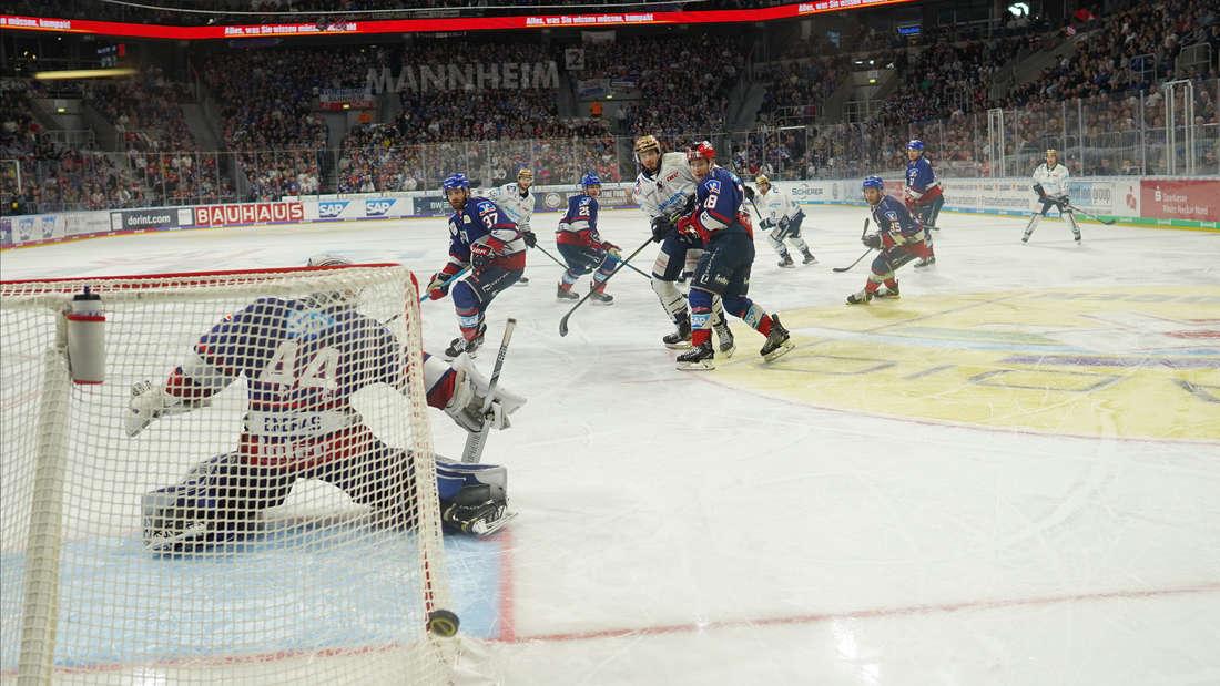 Adler Mannheim gewinnen gegen Iserlohn Roosters.