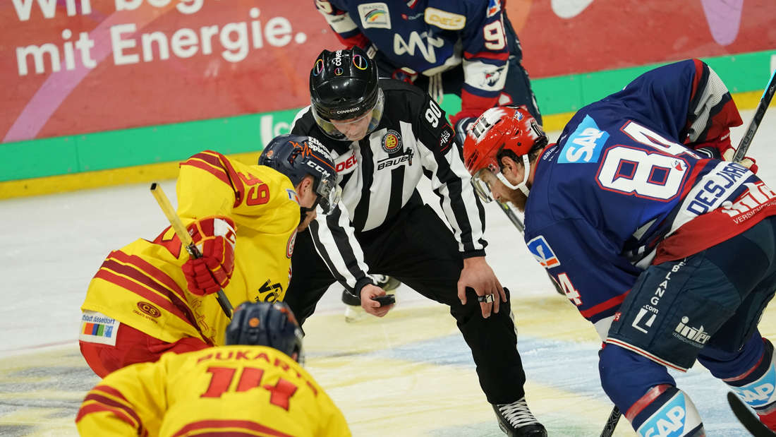 Die Adler Mannheim sind am Sonntag zu Gast bei der Düsseldorfer EG.