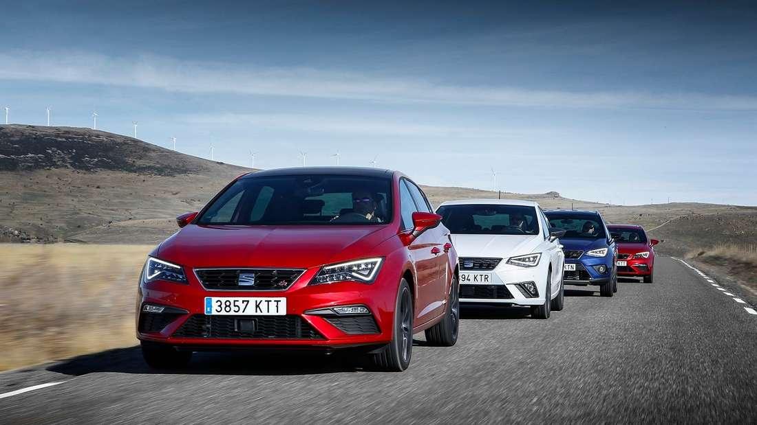 Die spanische VW-Tochter Seat hat die größte CNG-Flotte. Leon, Arona, Ibiza und sogar den kleinen Mii gibt es mit dem alternativen Antrieb.