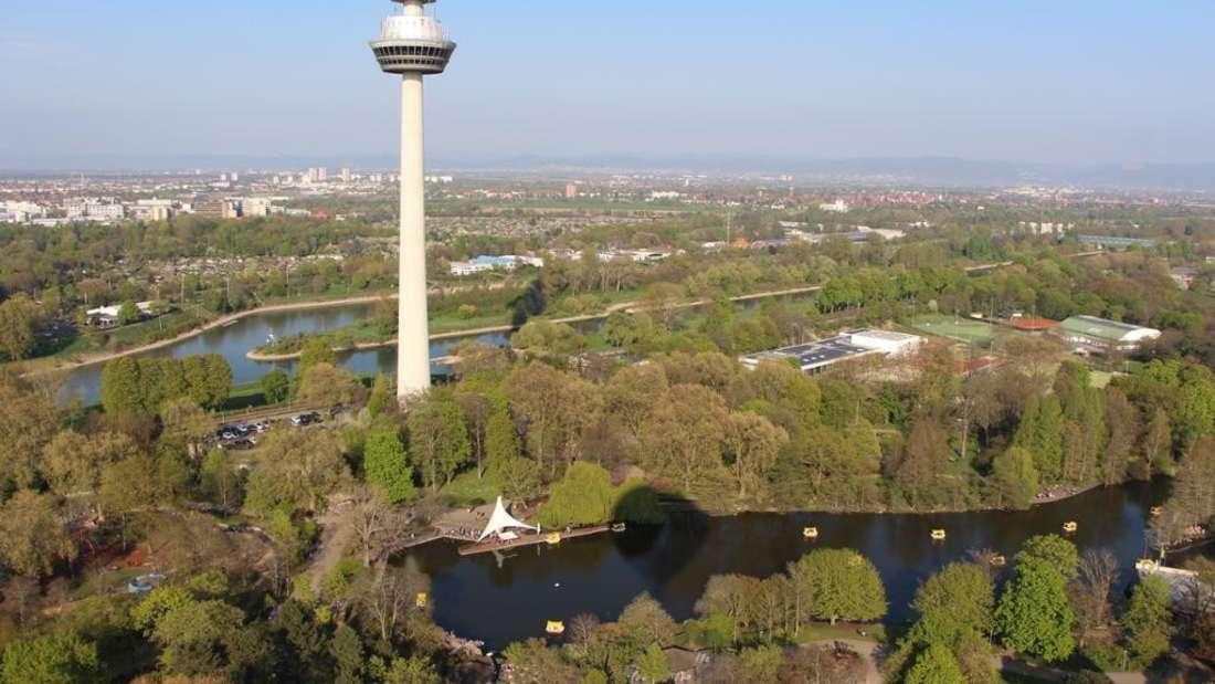 Der Fernmeldeturm mit Blick über den Luisenpark.
