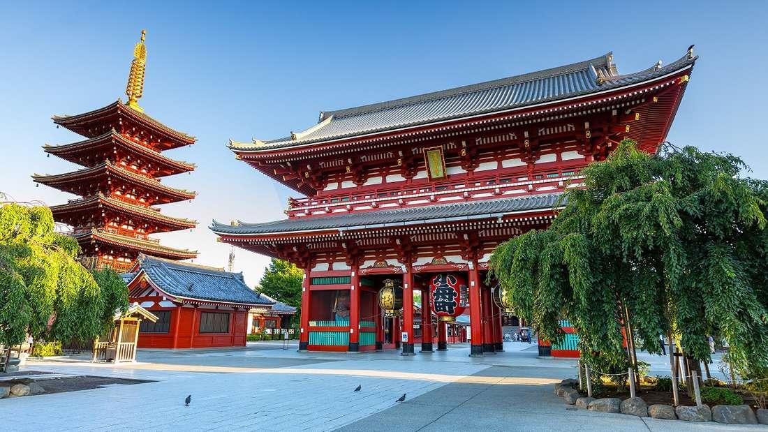Tokio: Lost in Translation