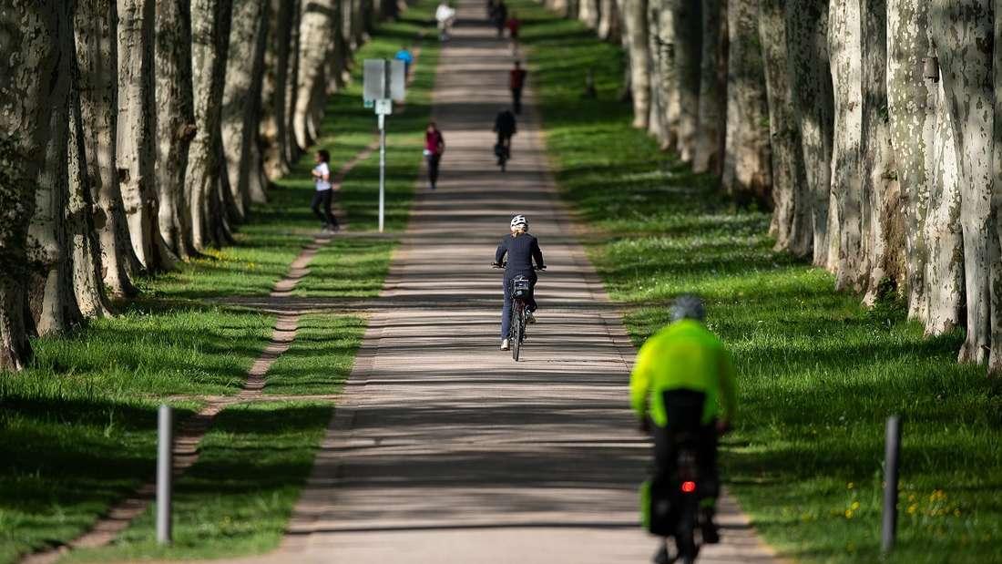 Auch auf dem Fahrrad gilt die derzeitige Abstandsregel von mindestens 1,5 Metern zu anderen. Doch ein Wissenschaftler aus Belgien ist da anderer Meinung.