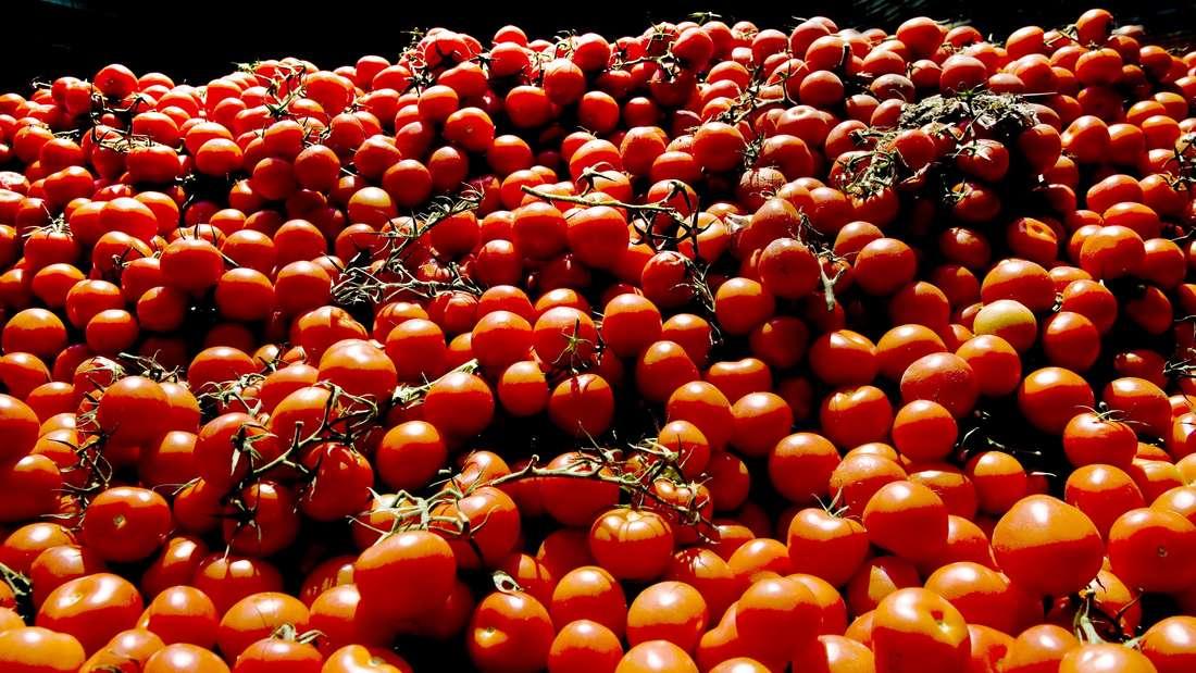 Wie reif die Tomaten eines Ketchups sind, verrät der Lykopingehalt.