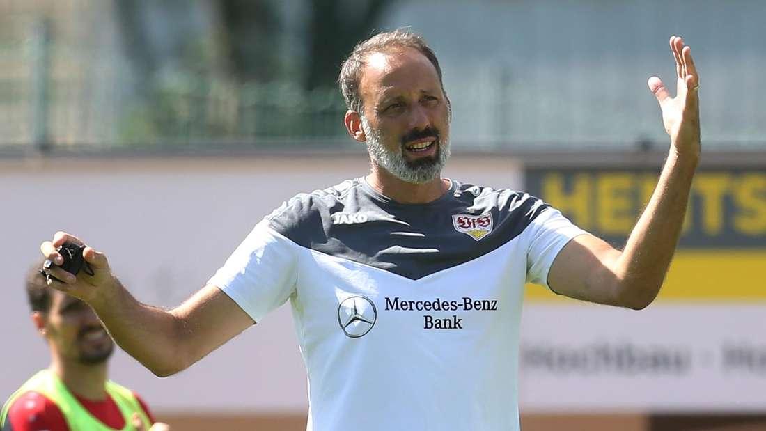 Der Trainer des VfB Stuttgart Pellegrino Matarazzo