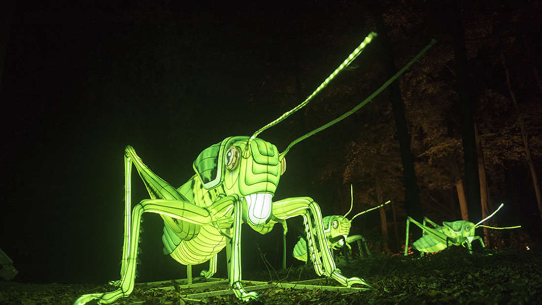 Illuminierte Tierfiguren in einem Park im Heidelberger Zoo.