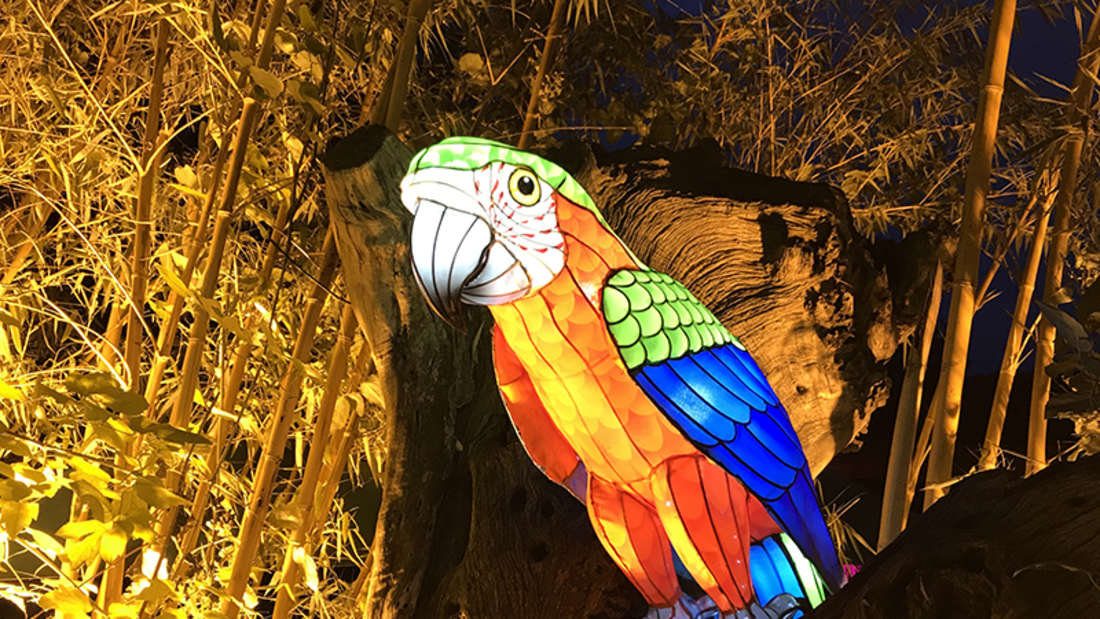 Eine illuminierte Papageien-Figur sitzt auf einem Ast.