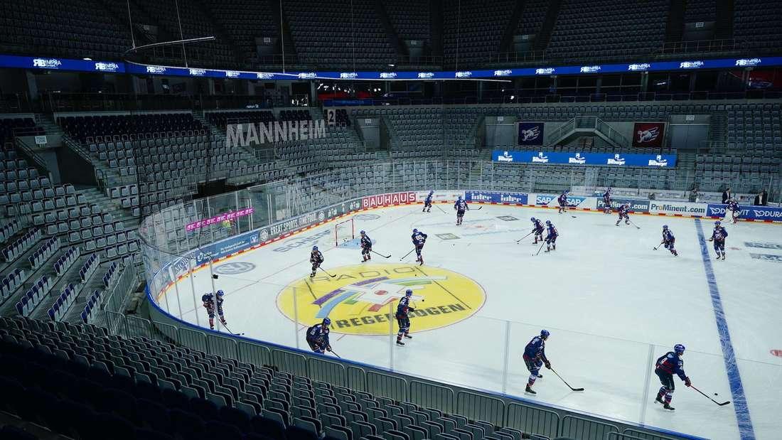 Die Adler Mannheim in der leeren SAP Arena.