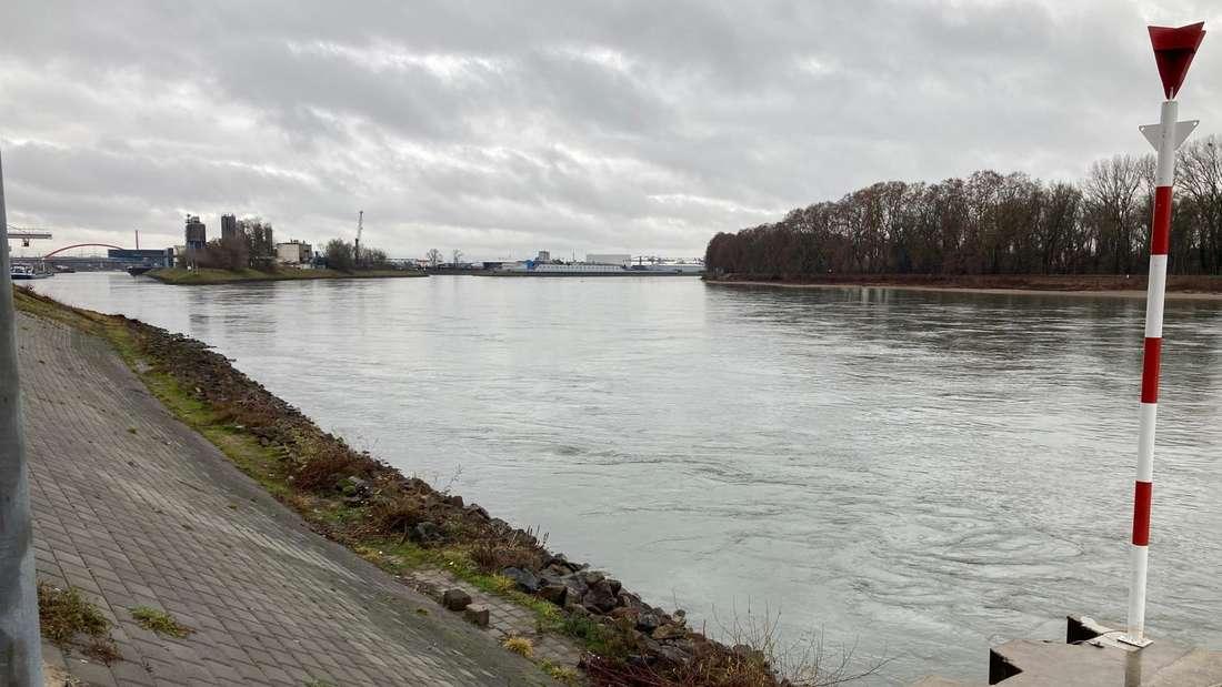 Der Rhein in Mannheim