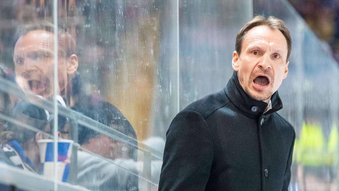 Adler-Trainer Pavel Gross kritisiert den neuen Playoff-Modus.