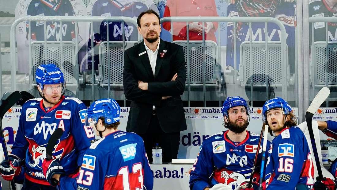 Pavel Gross gastiert mit den Adlern Mannheim in Krefeld.