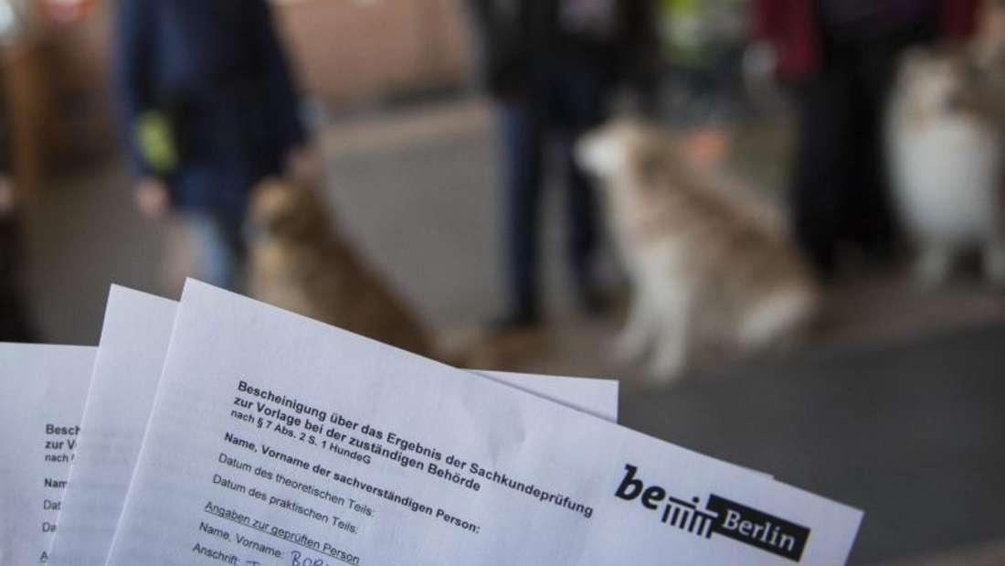 Nach bestandener Sachkundeprüfung wird ein Zertifikat ausgestellt. Foto: Robert Günther