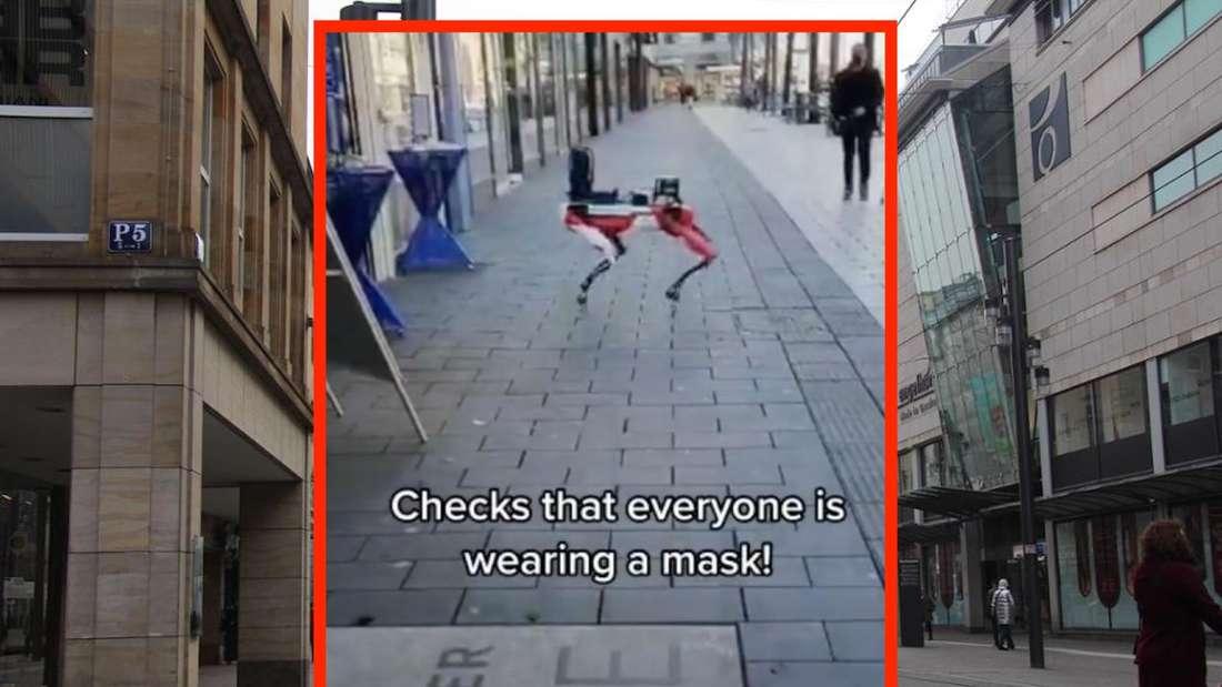 Ein Robo-Hund tanzt in Mannheim.