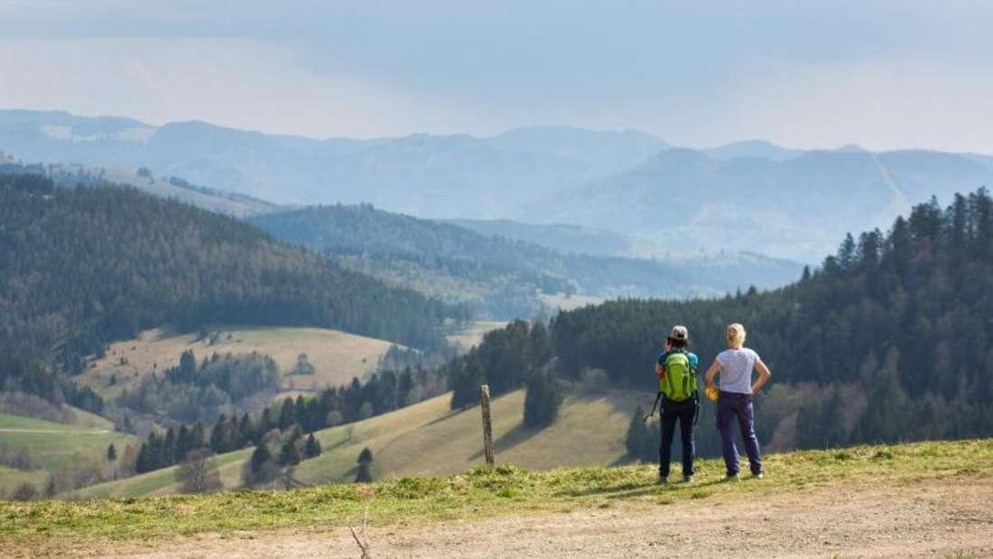 """Schwarzwald: """"Umwelteuro"""" für Tagesbesucher im Gespräch"""