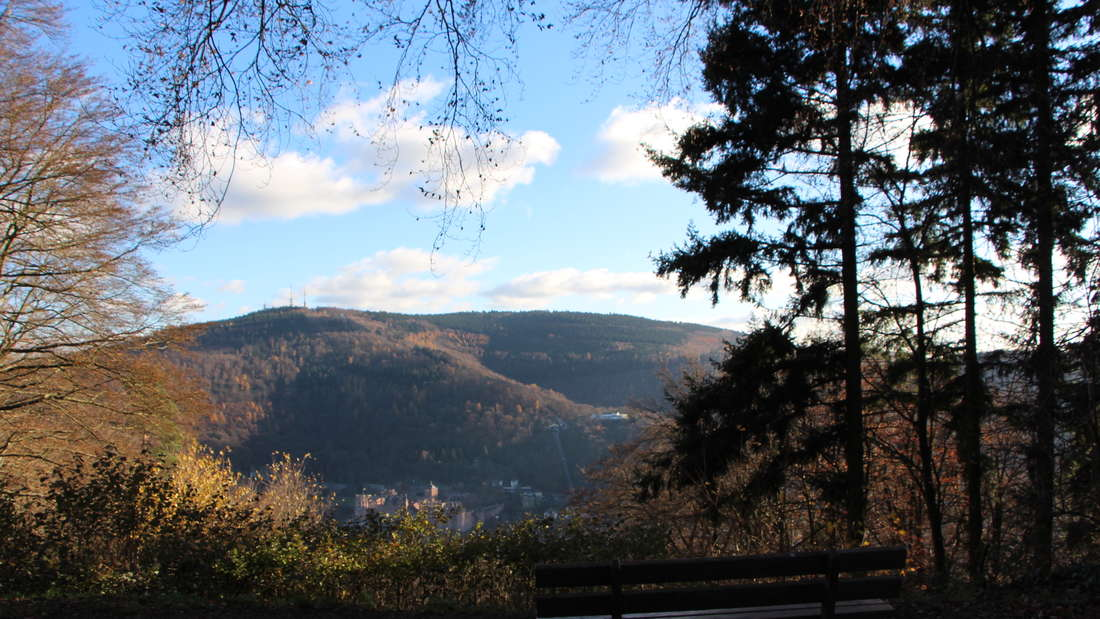 Die Aussicht vom Stephanskloster Heidelberg.