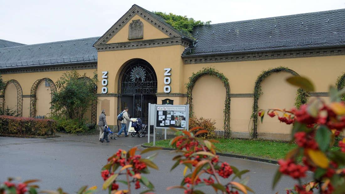 Der Eingang des Zoos Heidelberg